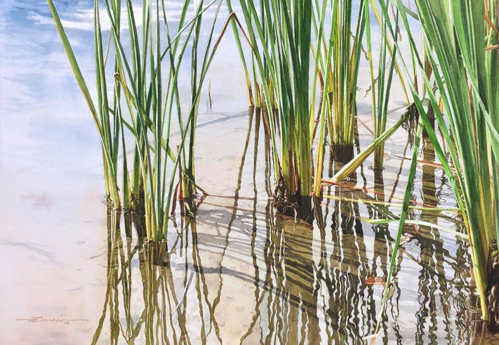 gary carabio stalks in water